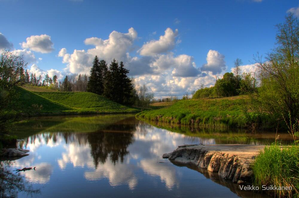Afternoon on the river by Veikko  Suikkanen