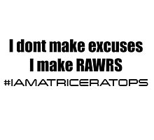 I Don't Make Excuses by swilmer