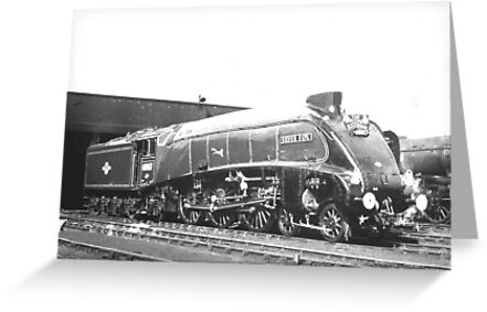 "A4 Class Pacific ""Silver Fox"" by Edward Denyer"