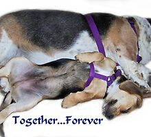 Together...Forever by Sunflwrconcepts