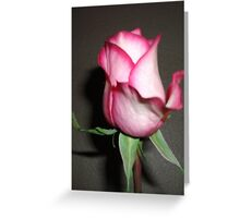 Gifted Rose #2 Greeting Card
