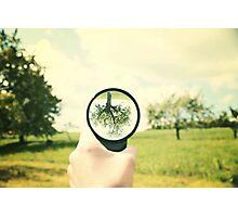 retro tree  Photographic Print