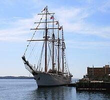 Tallship Esmeralda  by HALIFAXPHOTO