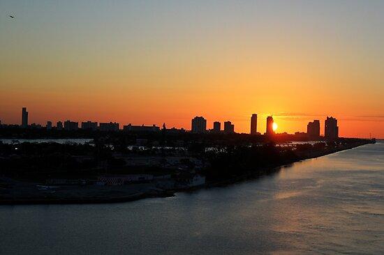 Good Morning Miami by Shelley Neff