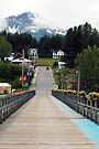 Welcome to Haines ~ Alaska by Barbara Burkhardt