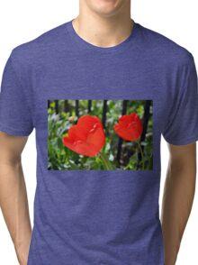 Backlit Red Tulips Tri-blend T-Shirt