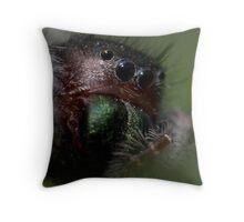 intimate portrait (salticidae sp.) Throw Pillow