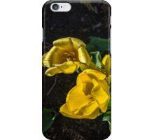 Finally Spring iPhone Case/Skin