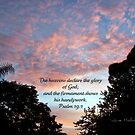 The Glory of God by June Holbrook