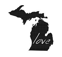 Love MIchigan by surgedesigns