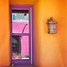 Reflection in a Purple Window by Linda Gregory