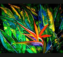The Bird of Paradise by ©Janis Zroback
