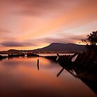 Otago Bay by Alex Wise
