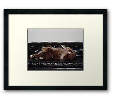 Uptight Framed Print