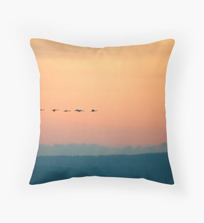 Swan's Sunset Throw Pillow