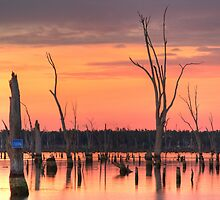 Pale Hues - Lake Mulwala by David Hunt