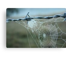 early morning droplets Canvas Print