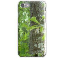 New Mayfly iPhone Case/Skin