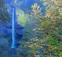 Nature Heals The Soul - Columbia River Gorge by artsandi