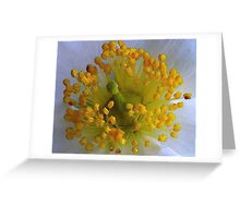 Simple Crown Greeting Card