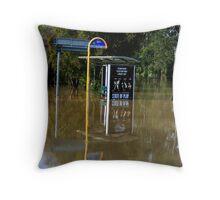 Flood in the Suburbs Throw Pillow