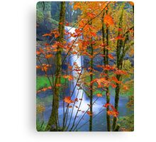 Next Page In The Book Of Nature Canvas Print