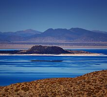 Mono Lake Blues by Susan Gary