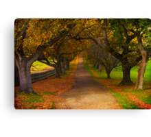 Avenue of Lost Souls Canvas Print