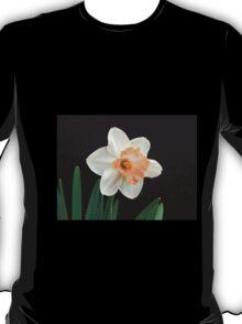 Orange and White Daffodil Against Black T-Shirt