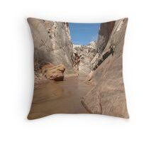 Paria Canyon Throw Pillow