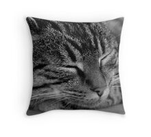 Holly V Throw Pillow