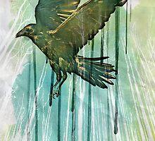 Raven Sky by vinpez