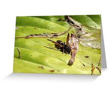 Wasp on a Leaf Greeting Card
