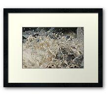 whipped cream or whipped sea  ? Framed Print