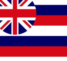 Hawaiian Murican Patriot Flag Series Sticker