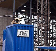 Do not stay in reach of danger by Alexander Meysztowicz-Howen