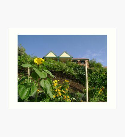 Community Garden Art Print
