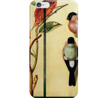 SEASON OF ALL THINGS WINGED iPhone Case/Skin