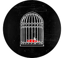 Living & Dying in a Cage Photographic Print