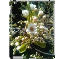 White Cherry Blossoms V1 iPad Case/Skin