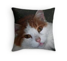 Are you looking at me?!? Throw Pillow