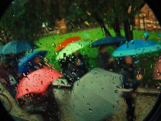 Umbrellas Of Verona by Al Bourassa