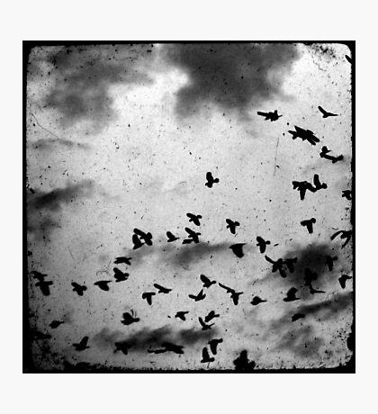 Doomsday Photographic Print