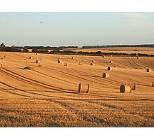 Lincolnshire Wolds Photographic Print
