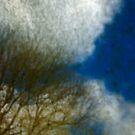 The Dirty Damn Sky by Philip  Rogan