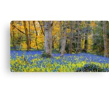 Bluebell Oil Induced Dreamscape at Godolphin House Canvas Print