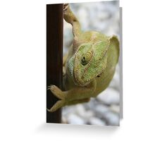 Chameleon: Fifty Shades of Green Greeting Card