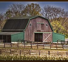 Horse Barn by Sheryl Gerhard