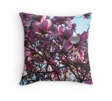 Magnolia Tree in Full Bloom Throw Pillow