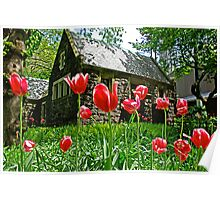 Red Flowers in Central Park, New York Poster
